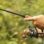 Comprar Cañas De Pescar Mar  online al mejor precio - Los 10 Mejores