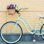 El mejor portal web para comprar Cesta Bicicleta - Los 15 mejores